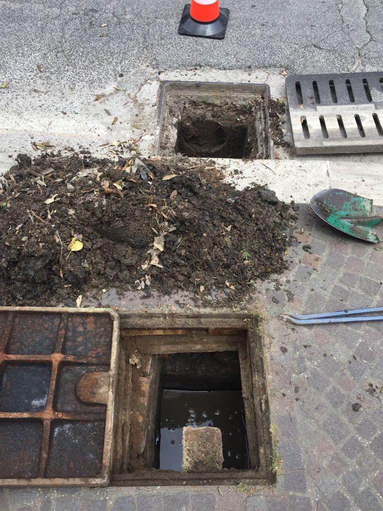 Foto interventi pulizia